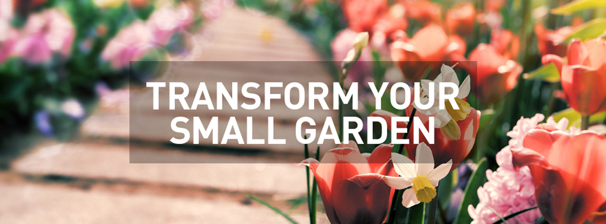 Transform your small garden
